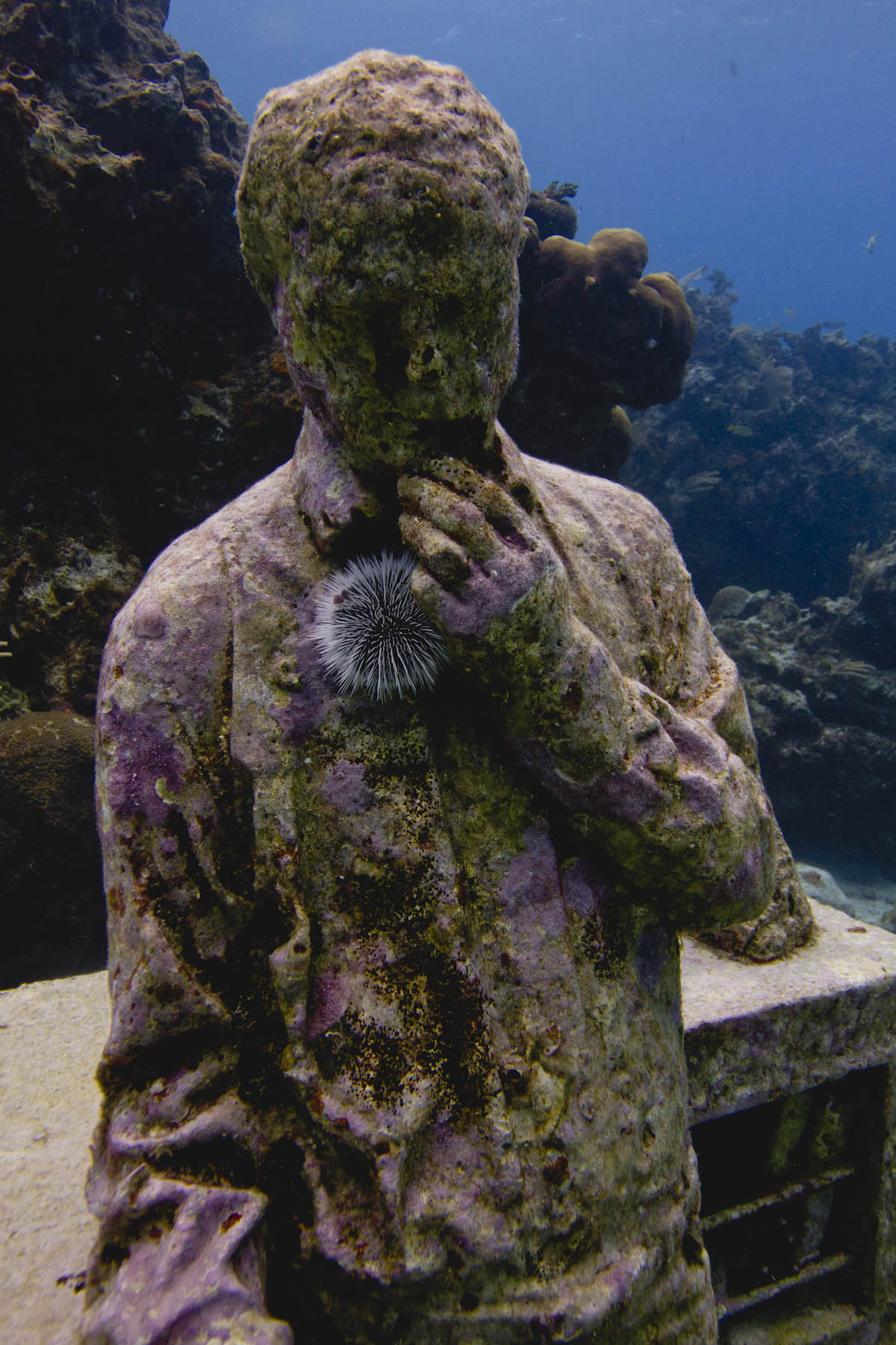 MUSA-sculpture-The-Dream-Collector-Jason-DeCaires-Taylor